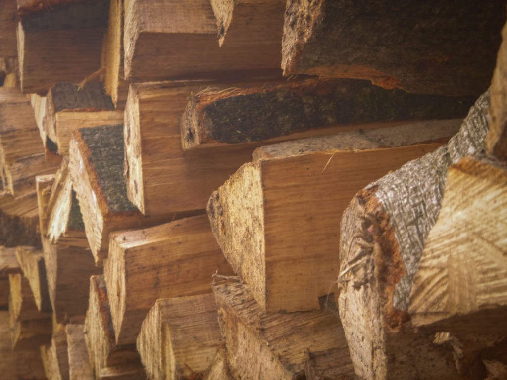 Phoenix's Woodpile Photo