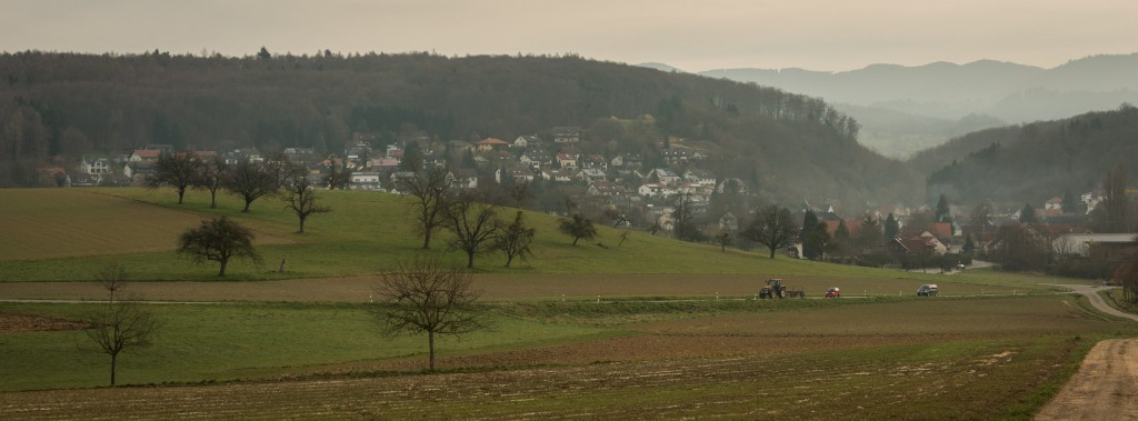 A view of the village of Riedlingen still resting in the morning mist, from the west.