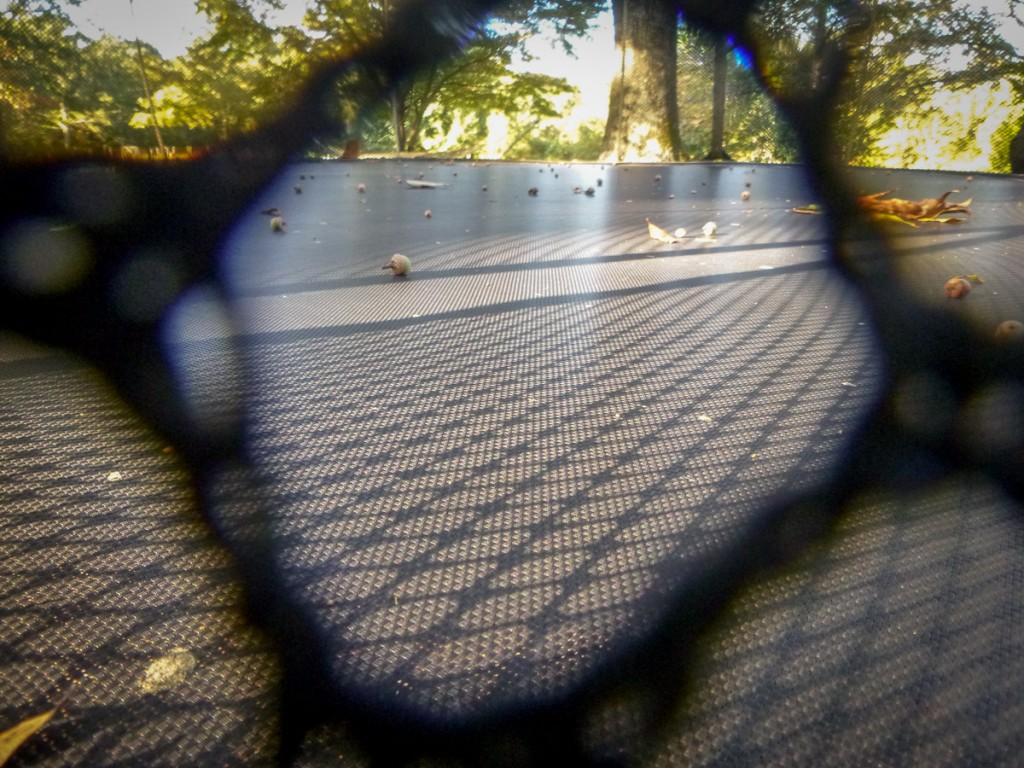 Phoenix is working on framing and composing interesting shots. Here, she uses the netting of the trampoline to frame the pattern of the sun coming through onto the trampoline surface. I think it's pretty cool.